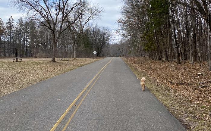 empty state park