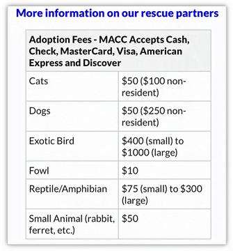 petco and petsmart adoption fees - macc